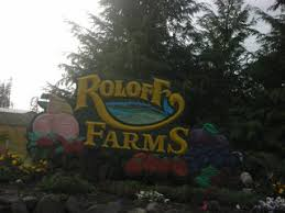 Roloffs Pumpkin Patch In Hillsboro Or by Alex And Chase Roloff Farms