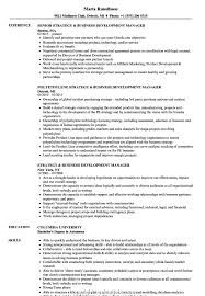 Executive Director Of Business Development Resume Strategy ... Thrive Rumes Business Development Manager Sales Oil Gas Project Management In Resume New 73 Cool Photos Of Samples Executive Prime 95 Representative Creative Cv Example Uk Examples By Real People Development Executive Strategy Velvet Jobs Sample Intertional Johnson Intertional Rumes Holaklonec Information