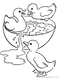 Full Size Of Coloring Pagecoloring Pages Duck D Is For 8 Page Png Ctok