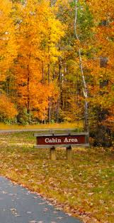 Hollow Pumpkin Patch Syracuse Ny by 43 Best Fall Foliage In Upstate New York Images On Pinterest