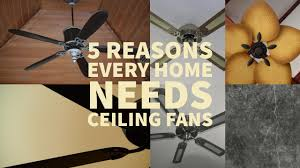 Ceiling Fan Counterclockwise In Winter by Why Every Home Needs Ceiling Fans Electrical Online