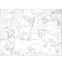 Coloring Book Forest With Cartoon Animals Vector Image