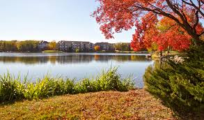 Apartments In Omaha, NE   Westport On The Lake In Omaha, NE Harry Potter Puts A Curse On Barnes Nobles Sales Westport News Noble Leaving Norwalk As Shoprite Plaza Shakes Up The Mix Front Street District Charter Realty Development In Pictures Mini Maker Faire Celebrating At Westportnowcom Writer Christy Colasurdo To Sign Her New Book Bnbuzz Twitter Wonderful Wines Great Food Good Company In All For Charity Booksellers Bookstores 392 State Rd Rt 6 North War Otographer Talk Behalf Of Save Children