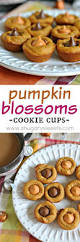 Kraft Pumpkin Mousse Trifle by 5915 Best Thanksgiving U0026 Fall Images On Pinterest Pumpkin