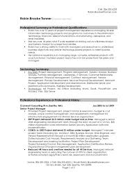 How To Write A Professional Summary For A Resume by How To Write Professional Summary In Resume Resume Overview