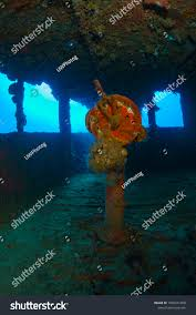 Truk Lagoon Telegraph Stock Photo (Royalty Free) 1050241658 ... Books Dive Truk Lagoon The Japanese Wwii Pacific Shipwrecks Exterior Of Sunken Ship Fujikawa Maru Chuuk Ferated With Diverse Travel Ultimate Wreck Divers Haven Largest Graveyard Ships In The World 17 Pics Abandoned Tank Undwater Micronesia 1600x1068 Split Image Staghorn Coral Acropora Sp And Island Lagoon Dauntless Over Japan Expedition Hollis Diver Magazine Trevally On Seiko Shipwreck Stock Aircraft Midships Hold Scuba Diving Shipwreck Photos