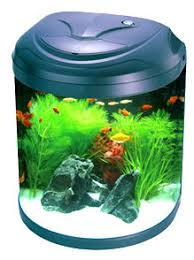 jbj nano cube aquariums and fish tanks