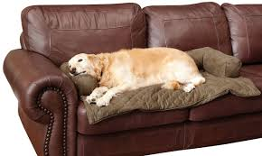 Snoozer Overstuffed Sofa Pet Bed by Protective Sofa Covers For Pets Best Home Furniture Decoration