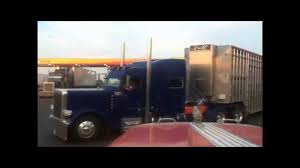 Cattle Hauling - YouTube Trucking The Worlds Best Photos Of 389 And Livestock Flickr Hive Mind About Metzger Agricultural Exemptions Instated For Regulations Pork Firms Worried Electronic Logging Device Could Hurt Henderson Jobs Otr Long Haul Truck Drivers West Land Cattle Hauler Jessica Lorees 2003 Pete 379 Livestockcattle Haulers Sale Llc Kenworth T800 With 4 Axle Tra Truck Spill Cleaned Up A Lot Help Krvn Radio Australian Livestock Rural Transporters Association