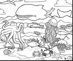 Remarkable Coloring Page Sea Ocean Animals With Underwater And Pages