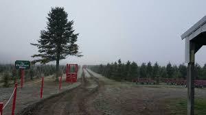 Tannenbaum Christmas Tree Farm Michigan by Tannenbaum Farms 2515 Sandhill Rd Mason Mi Christmas Trees Mapquest