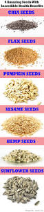 Sprouted Pumpkin Seeds Phytic Acid by Best 25 Sprouting Chia Seeds Ideas On Pinterest Sprouts