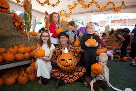 Daves Pumpkin Patch Brandon Fl by Usf Halloween Ufc Always A Good Time At Gametime