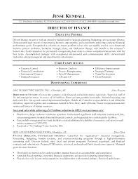Resume Summary Examples Finance Manager With Auditing Audit