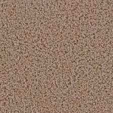 Par Rating Carpet by Home Decorators Collection Powder Springs Iii Color Amherst