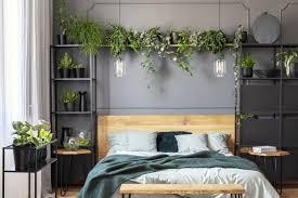 regal voll mit pflanzen im schlafzimmer bild 2 schöner