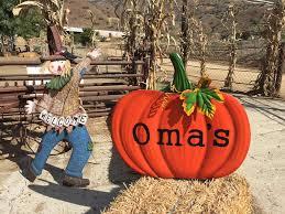 Pumpkin Patch Near Dixon Ca by Oma U0027s Pumpkin Patch Home Facebook
