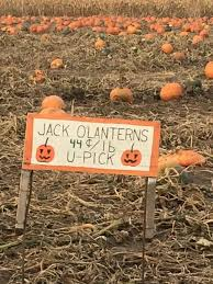Pumpkin Patch Dixon Il by The 10 Best Pumpkin Patches In Illinois 2016