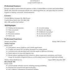 Resume Professional Summary Sample Free Awesome Summary Samples For ...