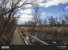 100 Ampurdan Path Wooden Railing Image Photo Free Trial Bigstock
