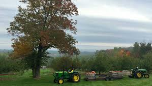 Meadowbrook Pumpkin Farm by Where To Pick Your Own Apples In Central Massachusetts Discover