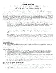 Call Centre Manager Resume Sample It Template Center 8 Best Director Ma