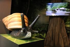 Smashing Pumpkins Snail by Education Detroit Zoo Blog