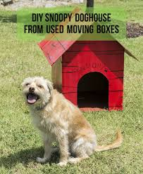 How To DIY A Snoopy Doghouse | Movers Who Blog In Nashville, TN Lintran Dog Transit Box In Chesterfield Derbyshire Gumtree Cab 5 Animal Boxes Fitted Dog Box Best Fit For Vw Touareg Maryland Sled Adventures Llc New Truck Project 2 Hole Alinum 200 Gift Corgi Stock Illustration 506388 Ideas Custom Alinum Biggahoundsmencom The Dapper October 2017 Subscription Review Coupon Working Truck Dogs Housed Metal Boxes Located Under Semi Used Kennel Suppliers And