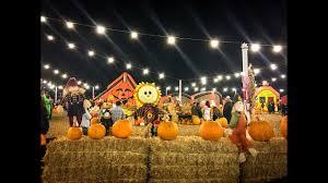 Irvine Regional Park Pumpkin Patch by Pumpkin Patch Youtube