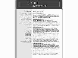 Banking Sector Resume Samples Through Distinction Sample Format For Awesome Word 2007