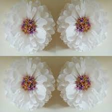 One 14inch Wedding Party Girls Room Wall Decorations Tissue Paper Pompoms Rainbow White Flowers