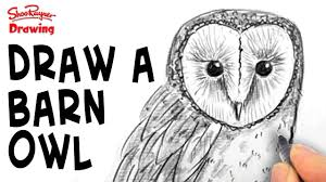 How To Draw A Barn Owl - Spoken Tutorial - YouTube How To Draw Cartoon Hermione And Croohanks Art For Kids Hub Elephants Drawing Cartoon Google Search Abc Teacher Barn House 25 Trending Hippo Ideas On Pinterest Quirky Art Free Download Clip Clipart Best Horses To Draw Horses Farm Hawaii Dermatology Clipart Dog Easy Simple Cute Animals How An Anime Bunny Step 5 Photos Easy Drawing Tutorials Drawing Art Gallery Kitty Cat Rtoonbarndrawmplewhimsicalsketchpencilfun With Rich