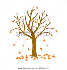 Tree with fallen leaves