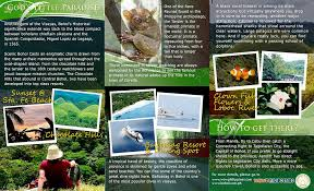 Philippine Travel Brochure Sample Palawan Travel Brochure On