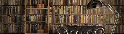 Plot Junkie Anne Perrys World War I Novels Southern Bluestocking