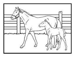 Free Kids Coloring Pages Cards Horses