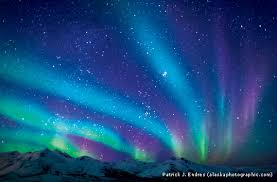 Nature s Witness Northern Lights