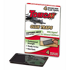 tom cat mouse trap shop tomcat 4 pack mouse glue trap with eugenol at lowes