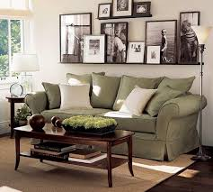 Family Room Sage Green Couch With Bamboo Rug For Modern Ideas Stylish Photographs Unique Wall Pictures Impressive