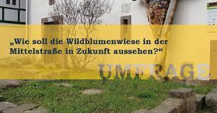 altstadtverein bad wildungen