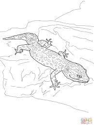 Click The Leopard Gecko Coloring