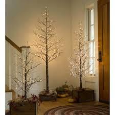 4 Snowy Birch Tree