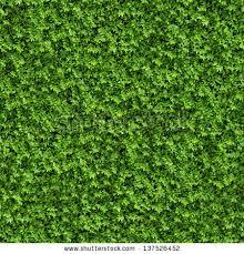 Green Bush Seamless Tileable Texture