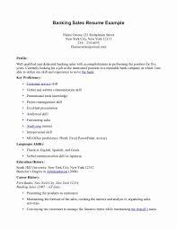 Relevant Experience Resume Summary Examples With No Danaya Us