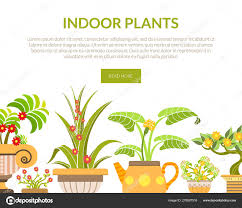 100 Blooming House Indoor Plants Banner Landing Page Template