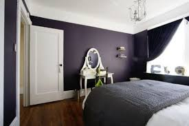 Dark Purple And Black Bedroom Ideas White Wall Paint Room Wooden Canopy Bed Rectangular Fur Rug Small Bookshelf Green