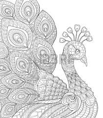 Adult Antistress Coloring Page Black And White Hand Drawn Doodle For Book