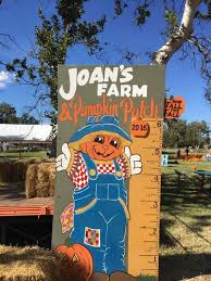 Livermore Pumpkin Patch by Joan U0027s Farm And Pumpkin Patch Livermore Ca