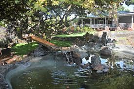 Where To Eat Kauai The Wandering Weekenders