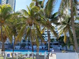 Publix Christmas Trees Miami by Miami Beach Suncoast Apartment I Fl Booking Com